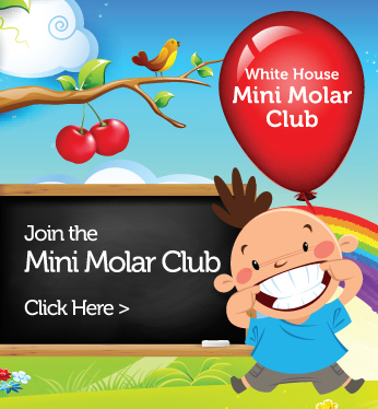 Mini Molor Club